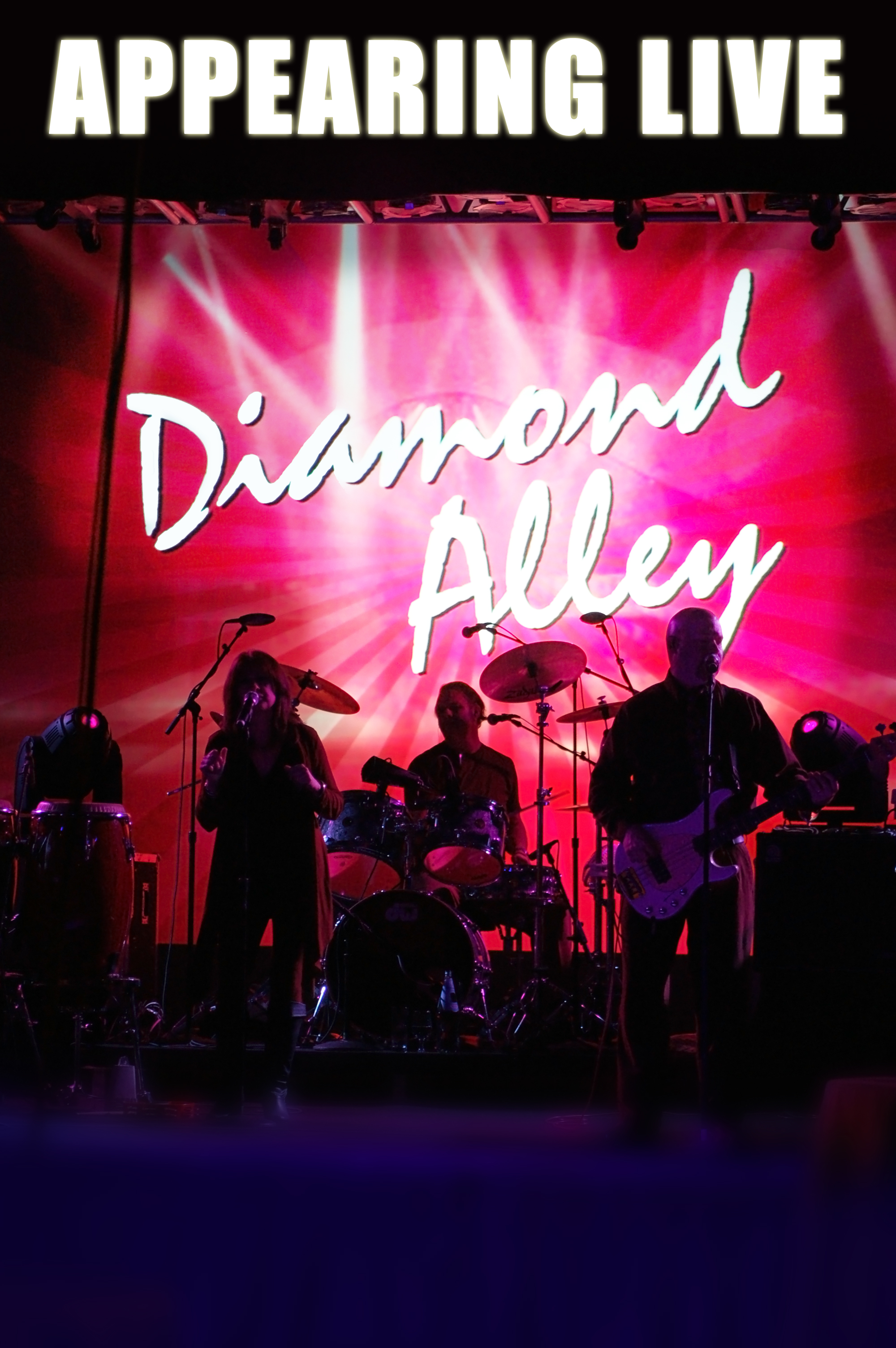 Diamond Alley 11 x 17 Promo Poster